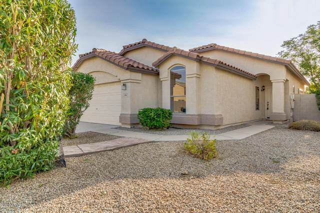 2866 S Lobo Canyon, Mesa, AZ 85212 (MLS #6129740) :: Kepple Real Estate Group