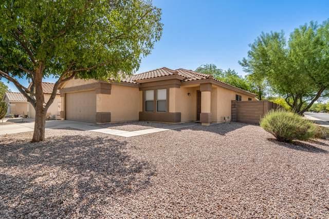 13855 W Fargo Drive, Surprise, AZ 85374 (MLS #6129819) :: Conway Real Estate