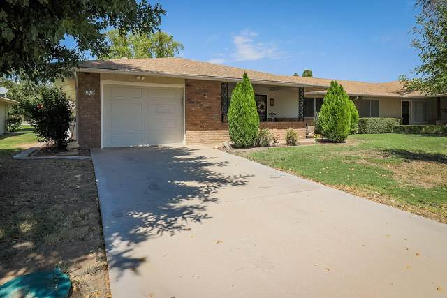 9516 W Sandstone Drive, Sun City, AZ 85351 (MLS #6129873) :: The Property Partners at eXp Realty