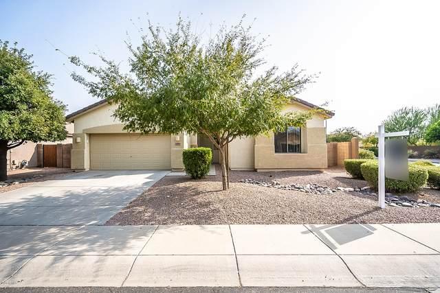 3097 E Kingbird Place, Chandler, AZ 85286 (MLS #6129942) :: Homehelper Consultants