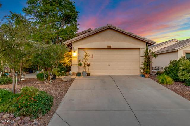 3665 S Conestoga Road, Apache Junction, AZ 85119 (MLS #6130112) :: Openshaw Real Estate Group in partnership with The Jesse Herfel Real Estate Group