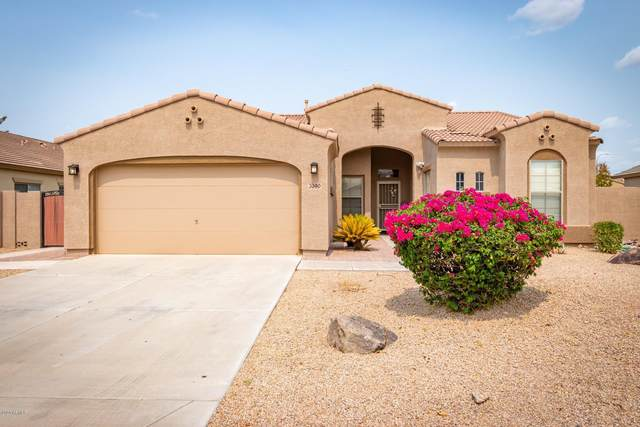 3390 E Canary Way, Chandler, AZ 85286 (MLS #6130162) :: My Home Group