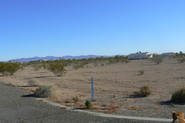 1623 S 356th Avenue, Tonopah, AZ 85354 (MLS #6130265) :: Long Realty West Valley