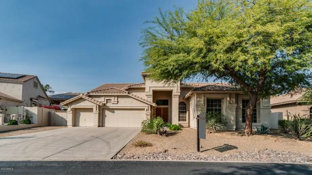 12632 E Jenan Drive, Scottsdale, AZ 85259 (MLS #6130293) :: Nate Martinez Team