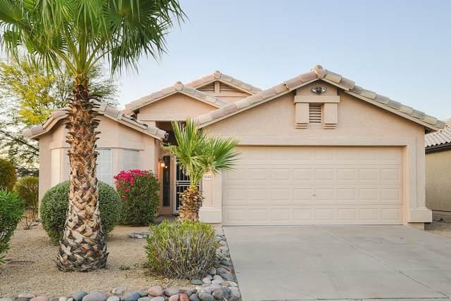 3502 E Edna Avenue, Phoenix, AZ 85032 (MLS #6130341) :: Dave Fernandez Team | HomeSmart