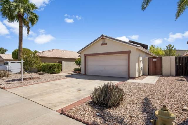 13709 W Ocotillo Lane, Surprise, AZ 85374 (#6130438) :: The Josh Berkley Team