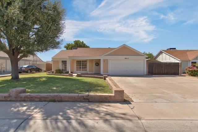 8603 W Columbine Drive, Peoria, AZ 85381 (MLS #6130532) :: Klaus Team Real Estate Solutions