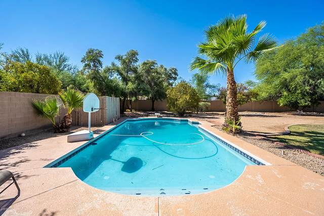 6125 E Surrey Avenue, Scottsdale, AZ 85254 (MLS #6130586) :: Riddle Realty Group - Keller Williams Arizona Realty