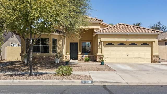 21858 E Calle De Flores, Queen Creek, AZ 85142 (#6130625) :: The Josh Berkley Team