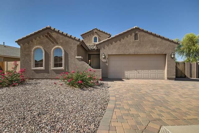 554 E Red Mesa Trail, San Tan Valley, AZ 85143 (MLS #6130685) :: Klaus Team Real Estate Solutions