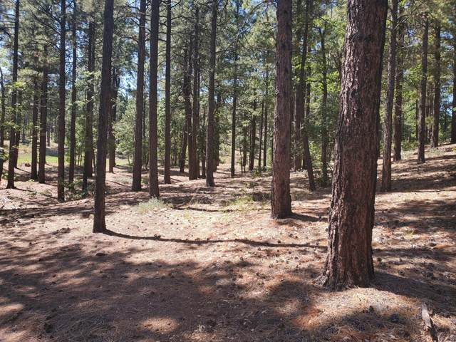 3525 W Picket Line, Flagstaff, AZ 86005 (MLS #6130788) :: Long Realty West Valley