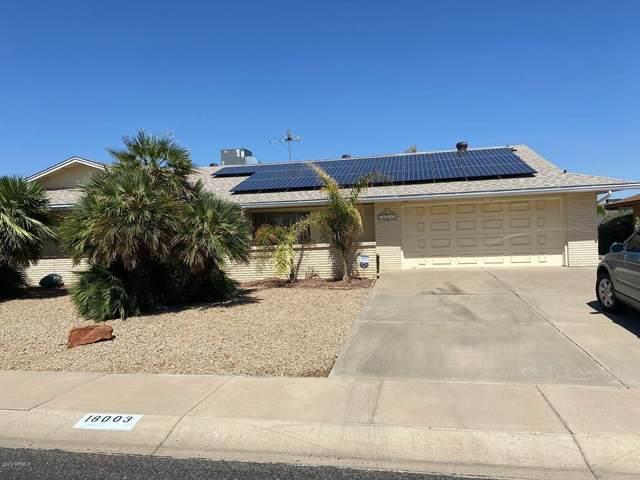 18003 N 135TH Drive, Sun City West, AZ 85375 (MLS #6130936) :: Sheli Stoddart Team   M.A.Z. Realty Professionals