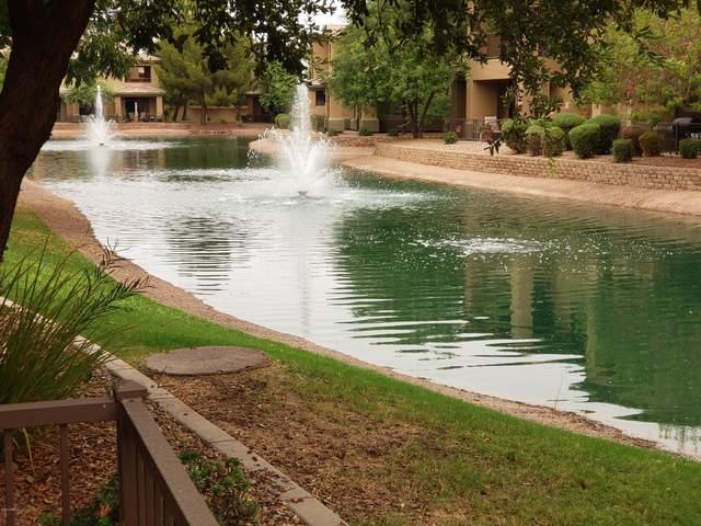 705 W Queen Creek Road #1099, Chandler, AZ 85248 (#6130970) :: AZ Power Team | RE/MAX Results