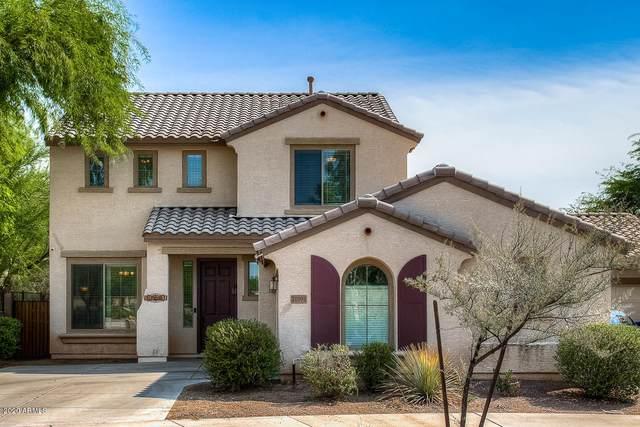 21091 E Munoz Street, Queen Creek, AZ 85142 (MLS #6130984) :: D & R Realty LLC