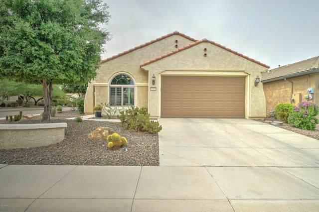 27003 W Escuda Drive, Buckeye, AZ 85396 (MLS #6131019) :: Klaus Team Real Estate Solutions