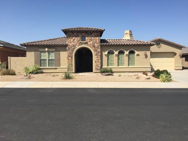 17923 W Narramore Road, Goodyear, AZ 85338 (MLS #6131021) :: Sheli Stoddart Team | M.A.Z. Realty Professionals