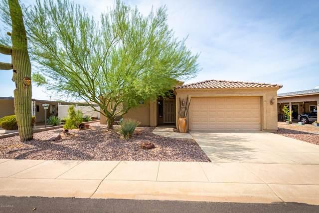2656 N Hogan Avenue, Mesa, AZ 85215 (MLS #6131050) :: Conway Real Estate