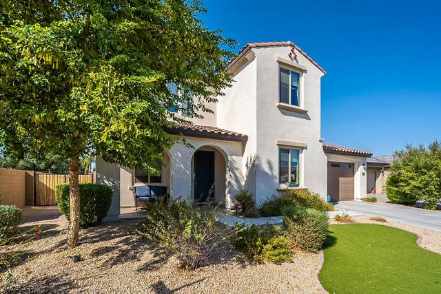 19678 E Peartree Lane, Queen Creek, AZ 85142 (MLS #6131063) :: Sheli Stoddart Team | M.A.Z. Realty Professionals