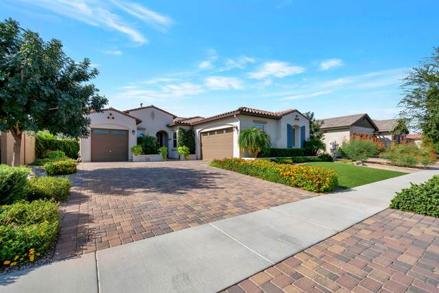 19691 E Peartree Lane, Queen Creek, AZ 85142 (MLS #6131223) :: Sheli Stoddart Team | M.A.Z. Realty Professionals