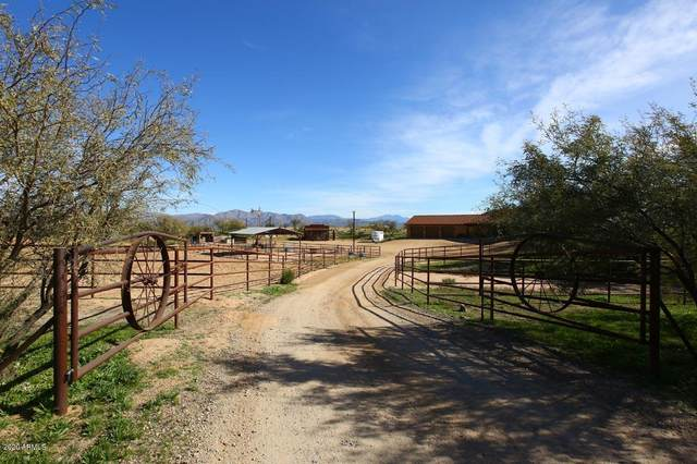 31435 N 164TH Street, Scottsdale, AZ 85262 (MLS #6131324) :: Homehelper Consultants