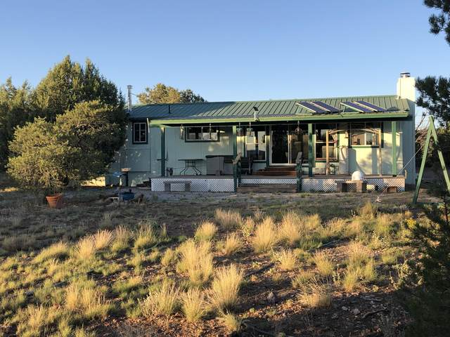 44152 N Crazy Coyote Way, Seligman, AZ 86337 (MLS #6131348) :: Long Realty West Valley