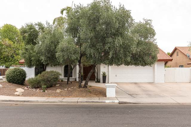 1151 N La Arboleta Street, Gilbert, AZ 85234 (MLS #6131431) :: Homehelper Consultants