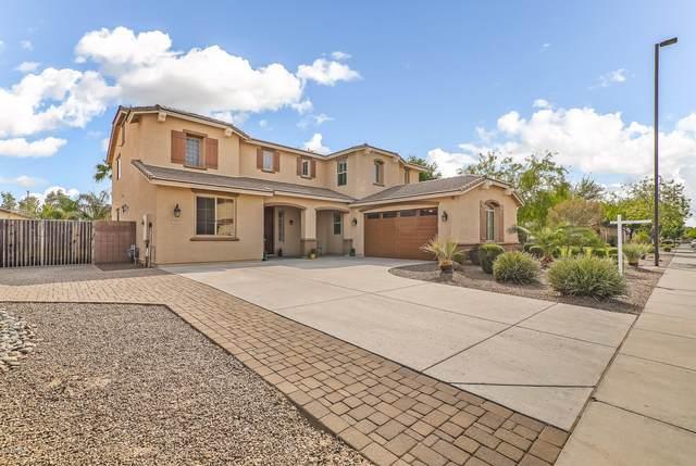 2509 E Carob Drive, Gilbert, AZ 85298 (MLS #6131464) :: D & R Realty LLC