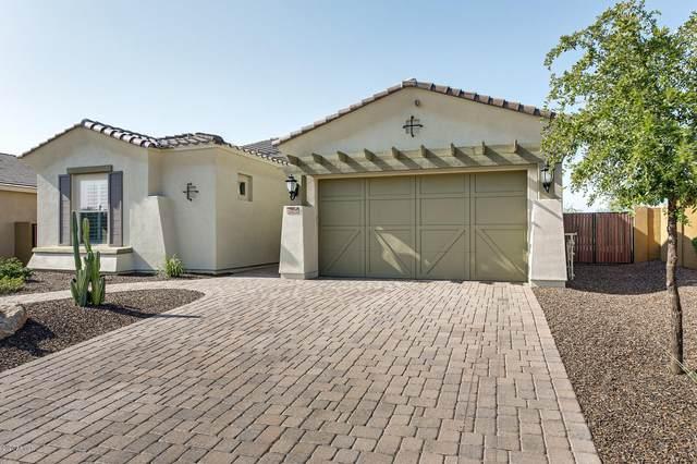 12475 W Gilia Way, Peoria, AZ 85383 (MLS #6131596) :: Long Realty West Valley