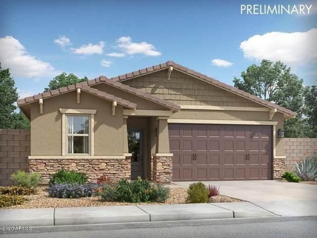 14105 W Pershing Street, Surprise, AZ 85379 (MLS #6131659) :: Conway Real Estate
