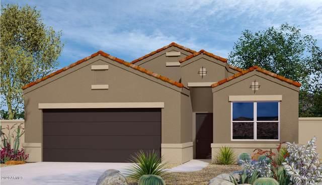 2460 E Alida Trail, Casa Grande, AZ 85194 (MLS #6131662) :: Conway Real Estate