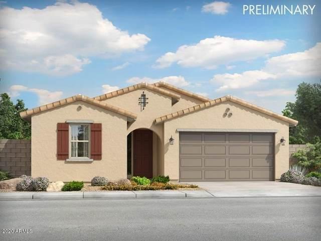 14160 W Old Oak Lane, Surprise, AZ 85379 (MLS #6131666) :: Conway Real Estate