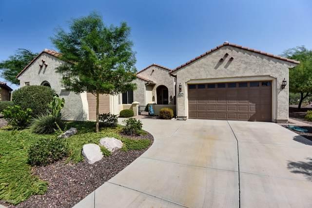 20629 N 269TH Drive, Buckeye, AZ 85396 (MLS #6131829) :: Conway Real Estate