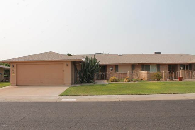 10431 W El Capitan Circle, Sun City, AZ 85351 (MLS #6131878) :: D & R Realty LLC