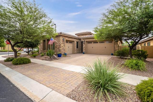 2875 E Maplewood Street, Gilbert, AZ 85297 (MLS #6131916) :: Selling AZ Homes Team
