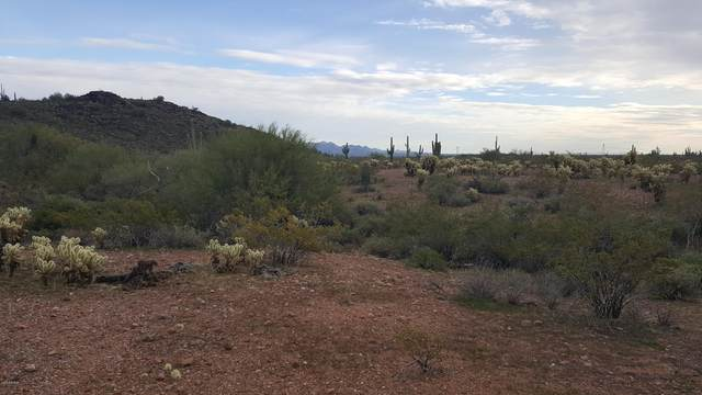 234 W Forest Pleasant Place, Wickenburg, AZ 85390 (MLS #6132021) :: The Riddle Group
