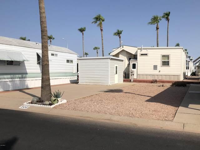 300 S Diamond Drive, Apache Junction, AZ 85119 (MLS #6132026) :: REMAX Professionals