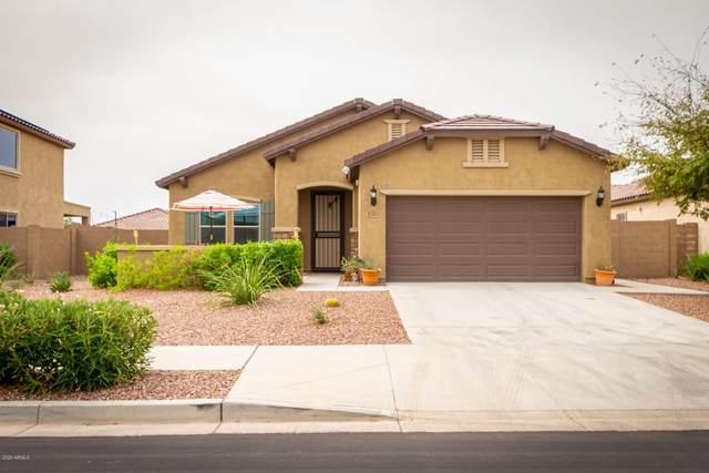 17509 W Bent Tree Drive, Surprise, AZ 85387 (MLS #6132111) :: Brett Tanner Home Selling Team