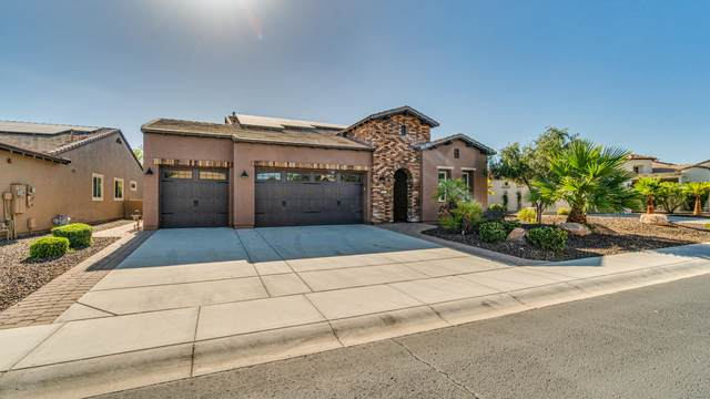 28572 N 127TH Lane, Peoria, AZ 85383 (MLS #6132125) :: Midland Real Estate Alliance
