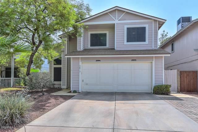 3813 W Camino Del Rio, Glendale, AZ 85310 (MLS #6132126) :: Selling AZ Homes Team