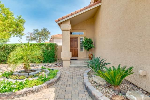 19523 N 78TH Avenue, Glendale, AZ 85308 (MLS #6132170) :: Selling AZ Homes Team
