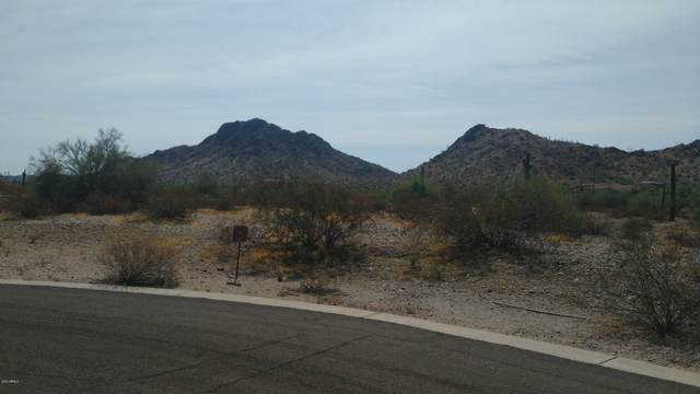 9400 S Krista Drive E, Goodyear, AZ 85338 (MLS #6132192) :: My Home Group