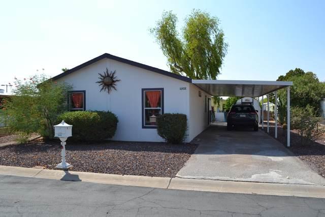 16408 N 33rd Street, Phoenix, AZ 85032 (MLS #6132195) :: Conway Real Estate