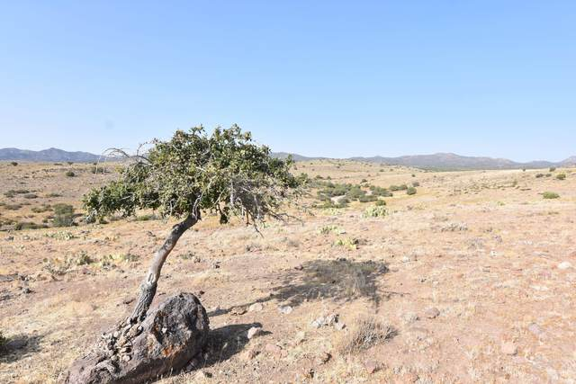 78 Acres Holly Berry Road, Wikieup, AZ 85360 (MLS #6132279) :: The Property Partners at eXp Realty