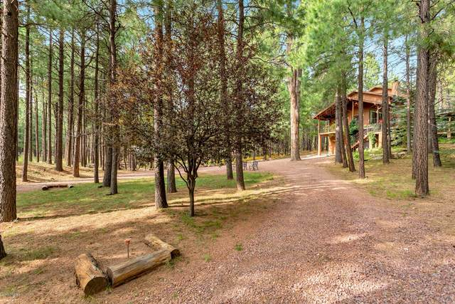 663 Trout Springs Road, Forest Lakes, AZ 85931 (MLS #6132386) :: Conway Real Estate