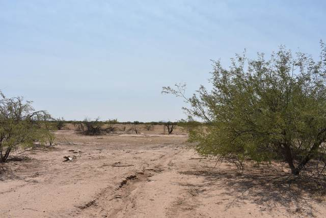 0 W Nugget Road, Arizona City, AZ 85123 (MLS #6132408) :: Kepple Real Estate Group