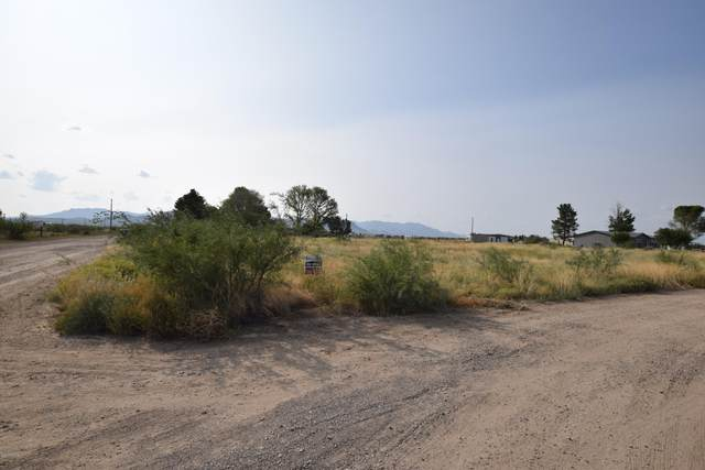 TBD Moores Lane, Willcox, AZ 85643 (MLS #6132410) :: Yost Realty Group at RE/MAX Casa Grande