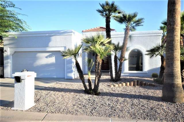 10517 E Elmhurst Drive, Sun Lakes, AZ 85248 (MLS #6132588) :: My Home Group