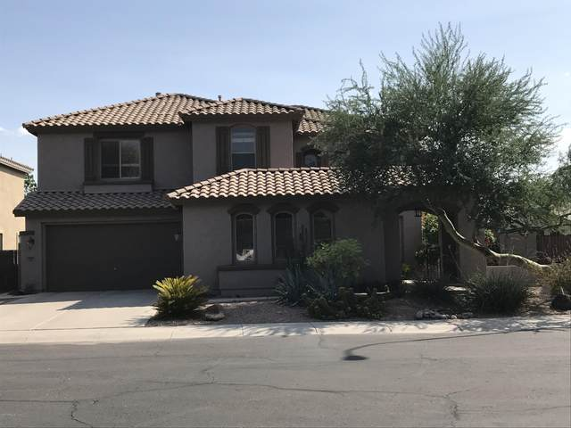 3087 E Raven Court, Chandler, AZ 85286 (MLS #6132591) :: Long Realty West Valley