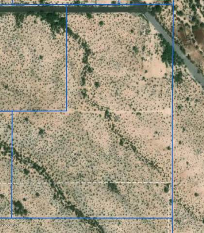 TBD E Briggs Road, Florence, AZ 85132 (MLS #6132671) :: Conway Real Estate