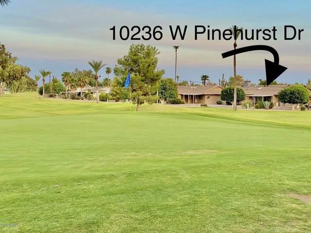 10236 W Pinehurst Drive, Sun City, AZ 85351 (MLS #6132673) :: Arizona 1 Real Estate Team